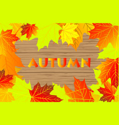 autumnal leaf of maple vector image