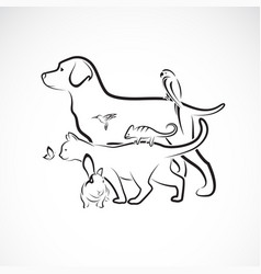group pets - dog cat parrot rabbit butterfly vector image