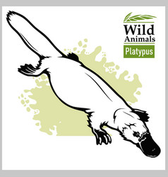 Platypus or duckbill animals australia series vector