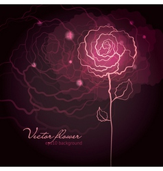 Rose flower design vector