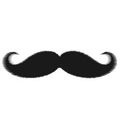 simple mustache icon vector image