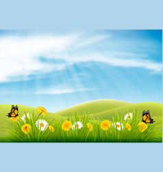 spring nature landscape background with flowers vector image