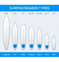 Surfing boards types and sizes infographics vector image