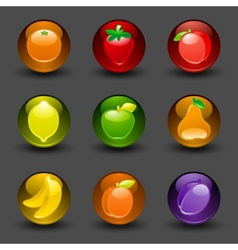 fruit buttons vector image