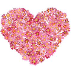 Heart shape pink sakura flowers splash vector