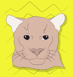 portrait of a cougar looking at wall vector image