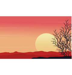silhouette of grass at morning scenery vector image