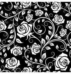 Vintage white roses seamless pattern vector image vector image