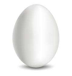 Egg white vector