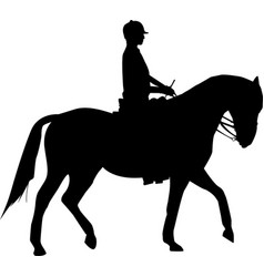 woman on horse vector image vector image