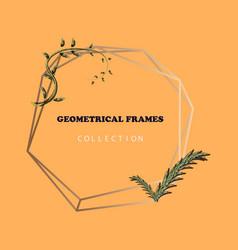 Floral elegant botanical card design vector