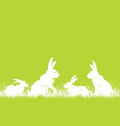 rabbits in grass vector image