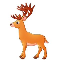 Cartoon deer vector image