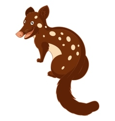Cartoon smiling Quoll vector image vector image