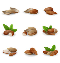 Almond icons set cartoon style vector