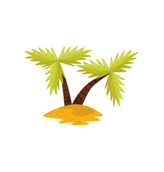 beautiful tropical palm trees vector image