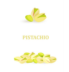 collection of banners with pistachios for your vector image