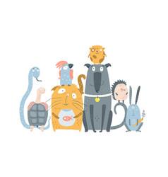 domestic animals pet shop vector image