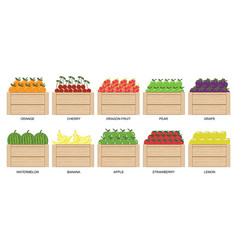 fruits and berries in wooden box1 vector image