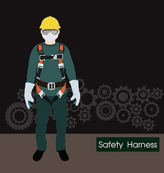 Safety harness equipment and lanyard for work at vector