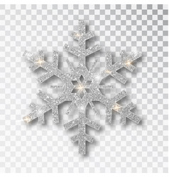 silver snowflake isolated on a transparent vector image