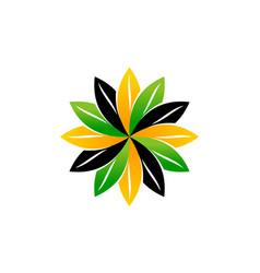 wealth management sun flower vector image