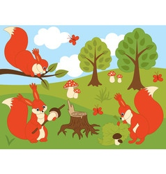 Woodland Squirrels vector image