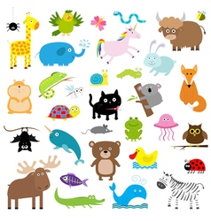 Zoo animal set Cute cartoon character collection vector image vector image