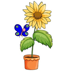 A butterfly near the pot with a flowering plant vector
