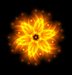 Abstract glowing light flower symbol of life and vector