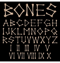 Bones Alphabet vector image