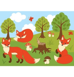 Cartoon Foxes vector image