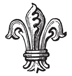 Fleur-de-lis difference are not only distinguish vector