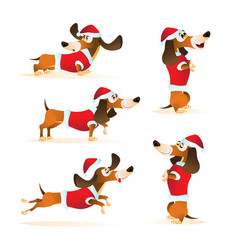 set cartoon brown dachshund in santas hat and vector image
