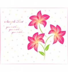 flower background floral background isolated vector image vector image