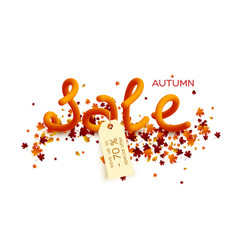 autumn sale poster design vector image