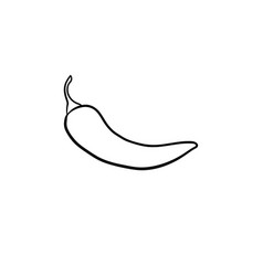Chili pepper hand drawn sketch icon vector