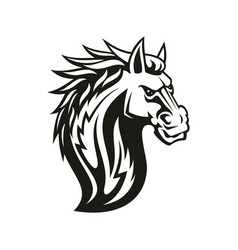 Equestrian sport mascot isolated horse head vector