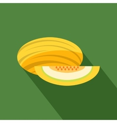 Melon icon vector image