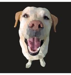 Polygonal of a dog vector image