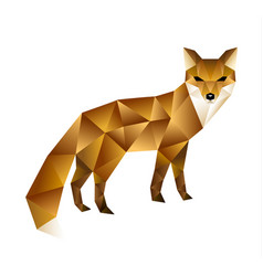 polygonal of fox vector image