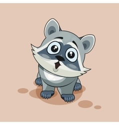 Raccoon cub surprised vector