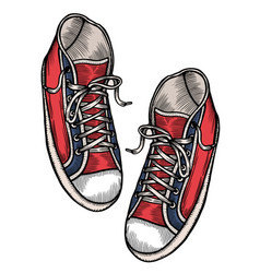 red sports sneakers vector image
