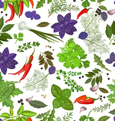 seamless texture of herbs and spices vector image