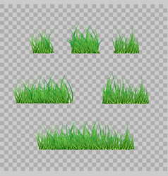 set green grass borders vector image