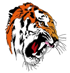 Tiger Art vector image