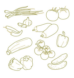 vegetables vegetarian farm products set vector image
