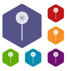Round candy icons set hexagon vector