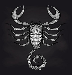 Doodle scorpion on blackboard vector