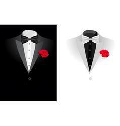 wedding suite vector image